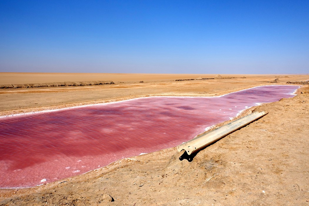 The Cosmic Pink Lakes Of The Tunisian Desert Another