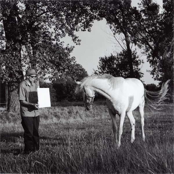 Invisible Painting (Horse) by Bruno Jakob