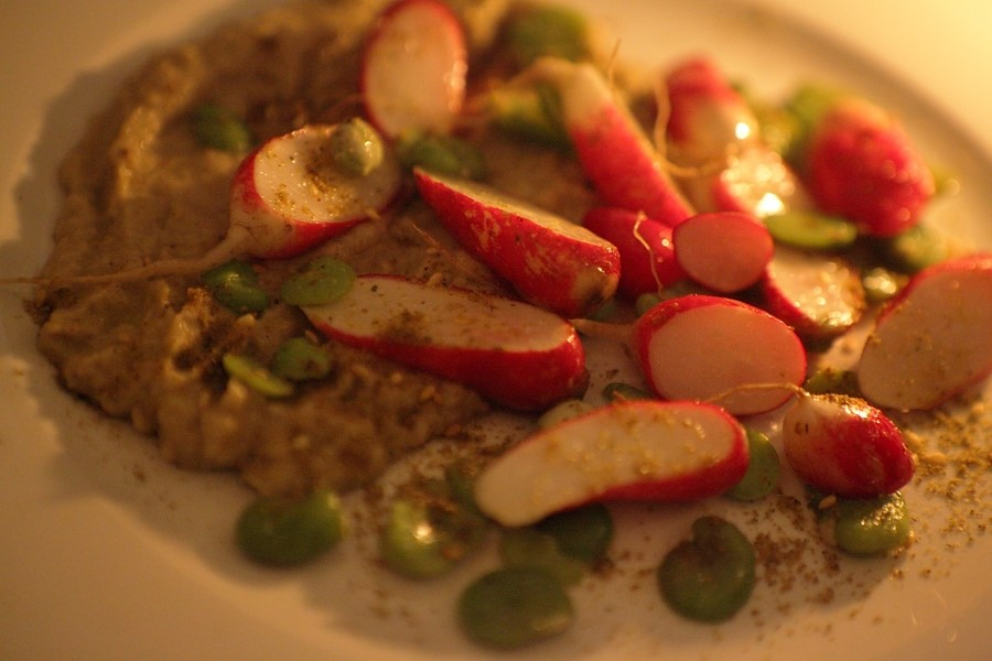 Broad beans, radishes and baba ghanoush