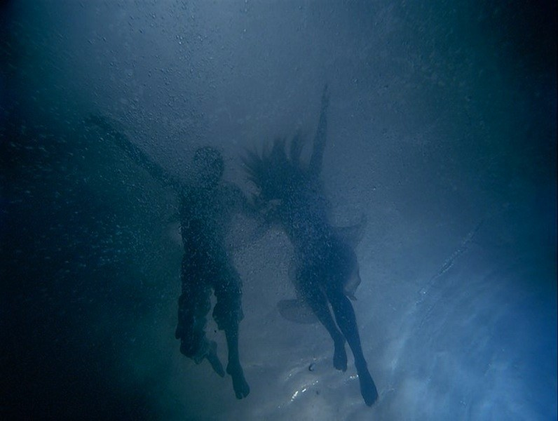 The Fall Into Paradise, Bill Viola, 2005