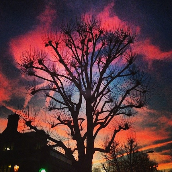 Ladbroke Grove, courtesy of Sam McKnight (@sammcknight1)