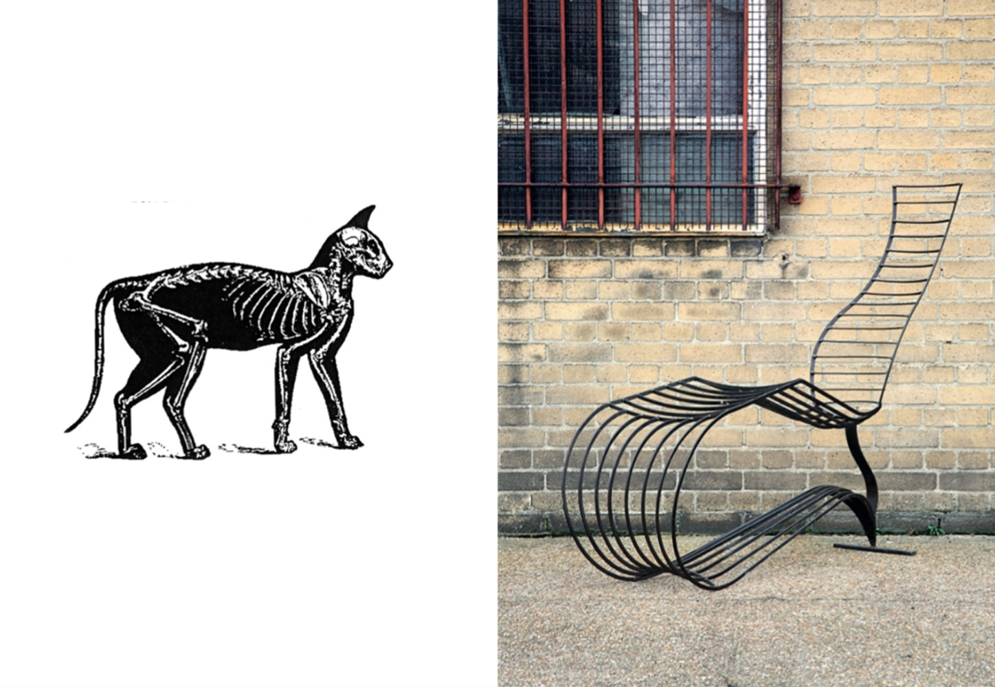 (L) Cat Skeleton, (R) Tom Dixon, Bolide Chaise, 1988