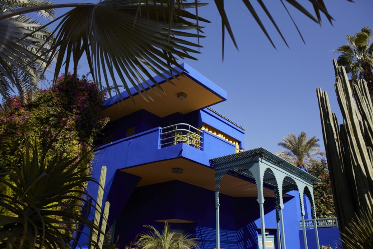 Yves saint laurent the jardin majorelle another for Jardin yves saint laurent maroc