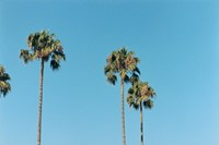 Yucca and Grace Ave, Hollywood, CA, 2000