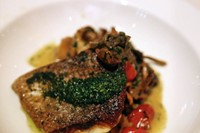 Wild sea bass with girolles, chantrerells and salmoriglio