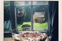 A Trifle in Window