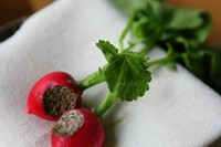 Radishes with seaweed butter