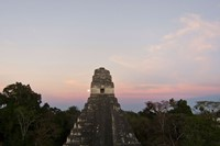Where On Earth: Tikal Schizo form