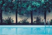 Hockney Painted This Pool, 1980