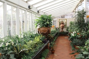 clifton-nurseries-london-11-of-13
