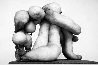 Work by Sarah Lucas, from Tittipussidad