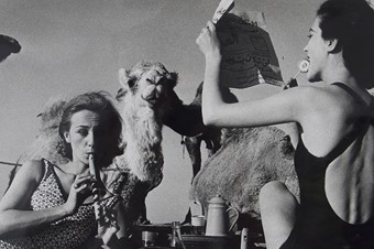 Tatiana and Marie Rose with Camels, Picnic Morocco, 1958