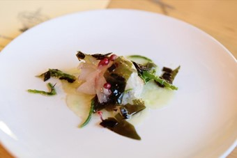 Sea bass with seaweed, cucumber and samphire at Burnt Enz