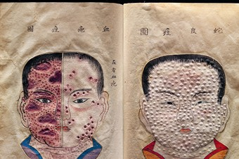 Hand-drawn and textured pages from a rare Japanese treatise