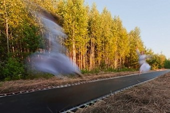 A 170-Foot Trampoline Installed in a Russian Forest