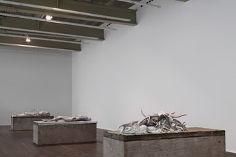 Installation view, 'Berlinde De Bruyckere. Three Sculptures'
