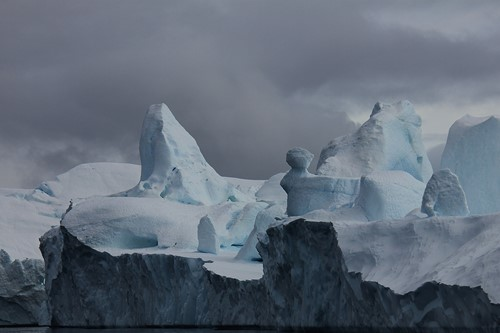 Icebergs from Sermeq Kujalleq Glacer