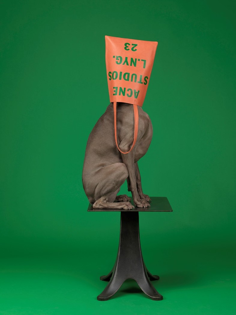 Acne Studios x William Wegman S/S13