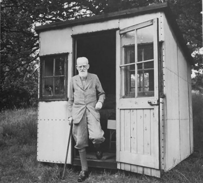 shaw's shed