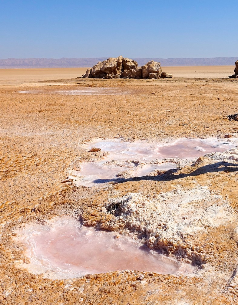 largest-salt-pan-in-sahara-chott-el-djerid-tunisia