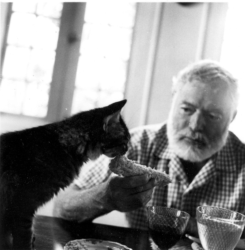 Ernest Hemingway feeds one of his cats at his villa Finca Vi