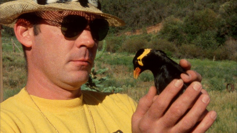 Hunter S. Thompson with his bird Edward