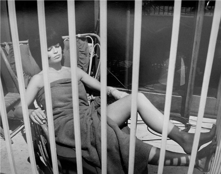 Tazio-Secchiaroli,-Behind-Bars-(Bardot-on-the-set-